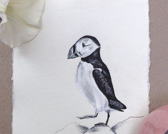 Puffin, Original Ink Drawing