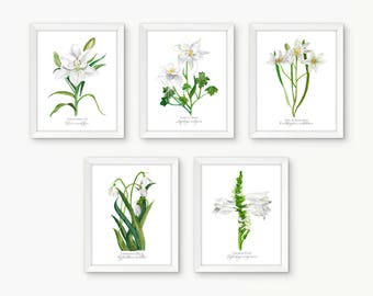 5 Print Individual Botanical Rosary Set, Joyful Mysteries