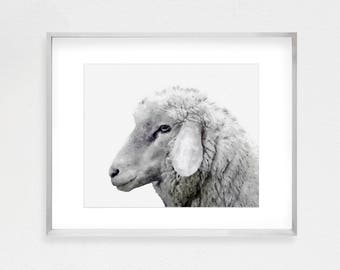 Baby Farm Animal Art, Sheep Print, Farm Animal Print, Baby Nursery Print, Digital Download, Farmhouse Wall Decor, Large Poster Print