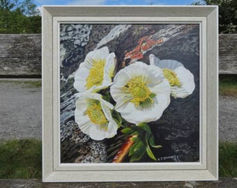 80's Painting of white Anemone flower framed by E Brown