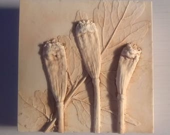 Poppy Seed Heads & Leaf. Miniature Tile. Unique Plant Impression Cast in Plaster.