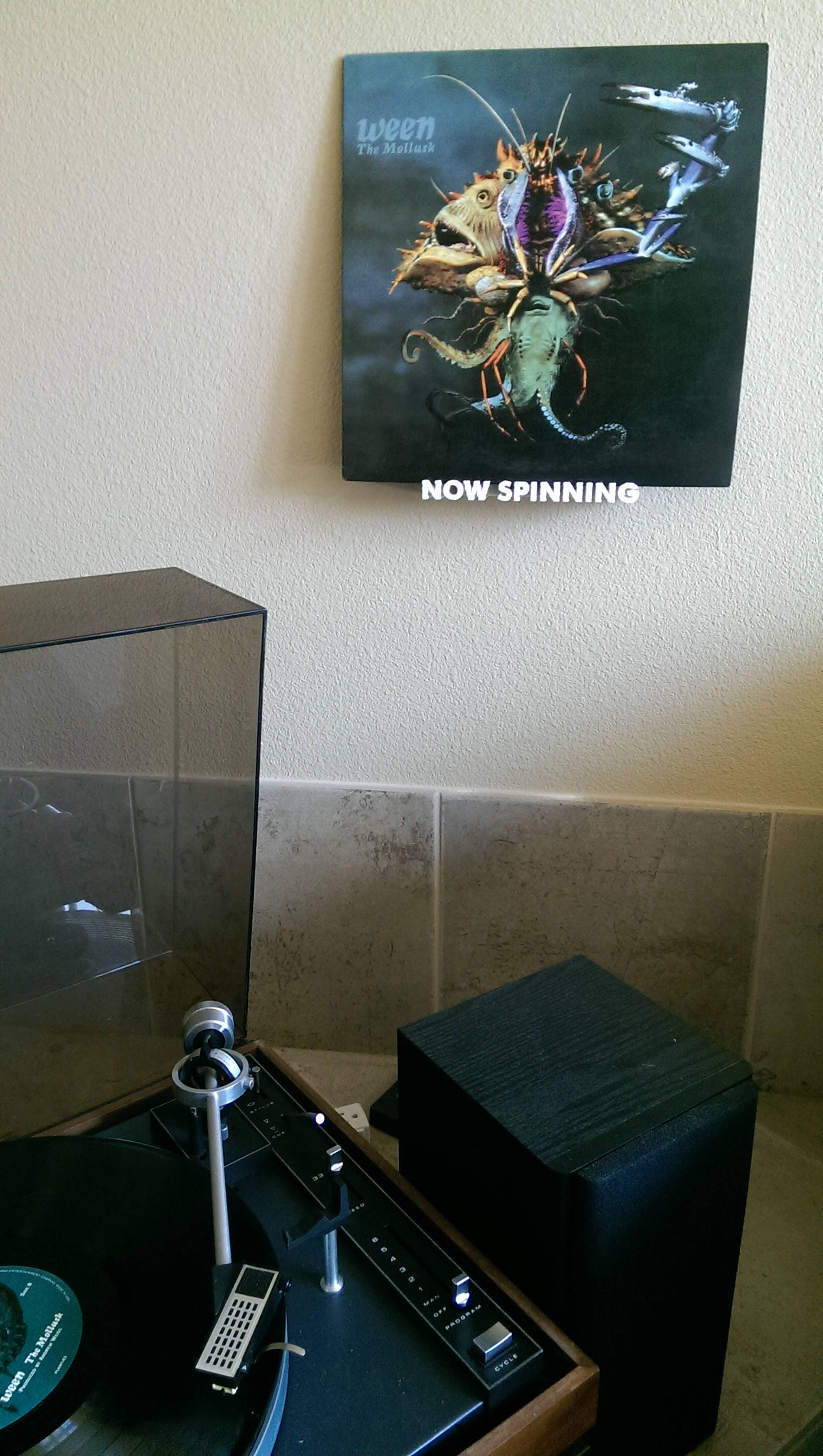 Now Spinning Vinyl Record Wall Mount Display Shelf 3d