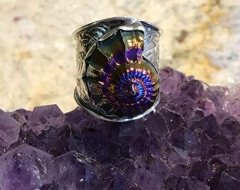 Titanium Ammonite Shell, Size 8