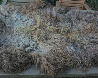 Spelsau raw fleece