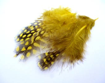 Dyed Yellow Feathers_PP034655887/3224_ Pack little Yellow dyed point feathers of 4-12 cm/ pack 16-20 pcs