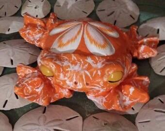 Frogg,  hand made, ocean, sea shell, sand dollar , sea urchin
