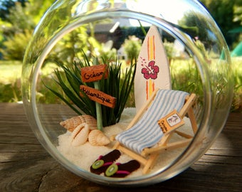 Dream bubble - Beach terrarium kit