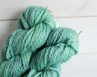 Hand dyed chunky yarn - Norbert the dragon themed yarn - dragon yarn  - geek yarn - indie dyed yarn - multi tonal yarn - quick yarn