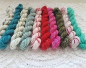 10 Sock Mini Skein Set- 20 or 40 yards each-Winterberry