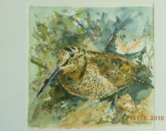 Woodcock in his element, watercolor on paper