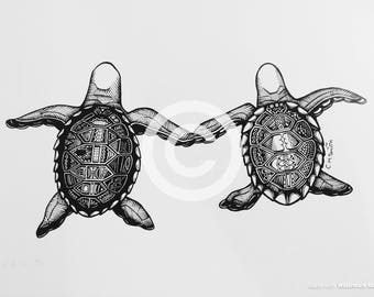 Turtle Pair Limited Edition Print