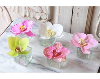 mini single bloom orchid in glass votive, mini phalenopsis bloom, single orchid bloom