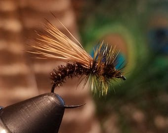 Peacock Caddis - Fly Fishing Flies