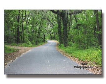 Old Country Road {Photography} for Framing, Greeting Cards, and Postcards