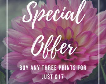 Special Offer, Home Makeover, Quote Print, Wall Art, Inspirational Quote, Gallery Wall, Nursery Decor, Office Art, Gallery Prints
