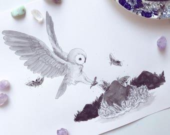 OWL - Original Inktober Illustration // Painting