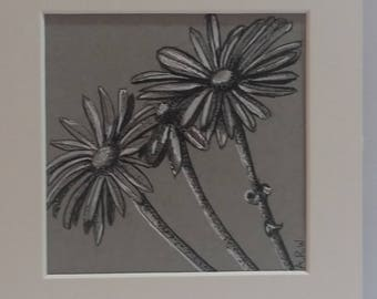 Original pen & ink daisies