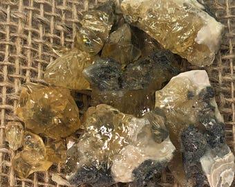 Fossilized Clam With Golden Honey Calcite Specimen - Natural Gemstone - #C7