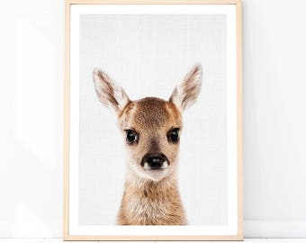 Woodland Animals, Baby Animal Print, Deer Print, Fawn Print, Nursery Wall Art, Woodland Nursery, Woodland Wall Art, Deer Poster, Deer Photo