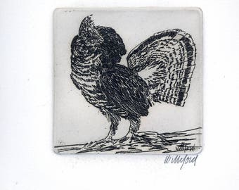 Rooster Signed etching by Hollis Williford