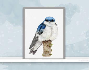 Swallow {Birds of my heart} Watercolor Illustration & Painting Art Print