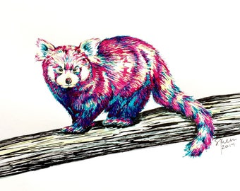 Original Pen &  Ink Illustration - Red Panda