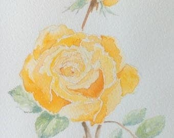 Beautiful watercolour yellow rose picture.