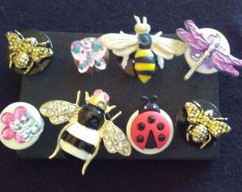 Bees, Bugs, and Butterflies Push Pins