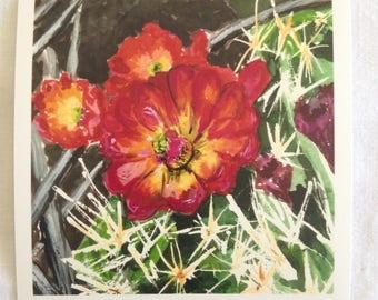 Claret Cup Cactus #1 print