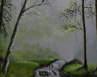 The forest brook