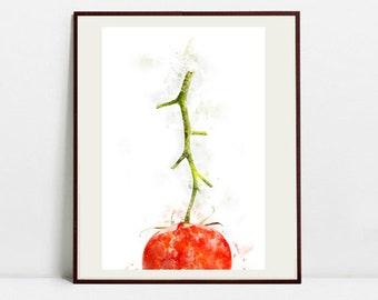 Tomato Watercolor Art Print, Tomato Illustration, Kitchen Wall art, Kitchen Wall Decor, Vegetable Print