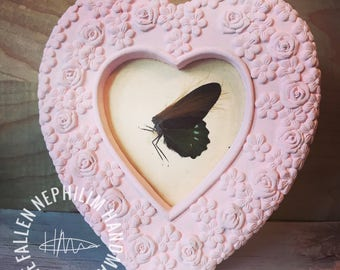 Pressed Fairy in a Frame - Preserved Dead Fae - Macabre Oddities - Curio Oddity - Vintage - Pink Heart Frame - Butterfly