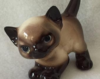 Very Cute Siamese Kitten (#125)