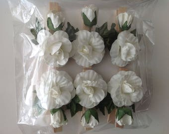 White Rose on wooden clothes pins