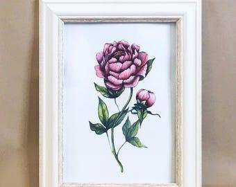 Mothers day, flower art, floral art, peony art print, vintage art, art print, wall decor, wall art, original watercolour, hand painted art