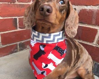 Red Dachshund Dog Bandana