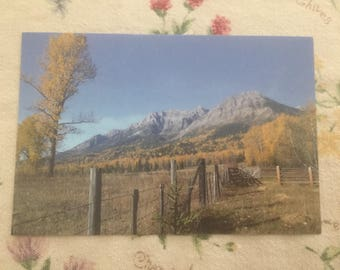 Back Country postcard