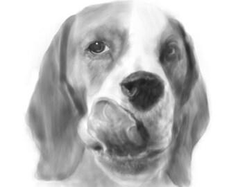 pet portrait, dog portrait, custom pet portrait, custom dog portrait,  dog painting, dog, dog art, custom portrait, pet art