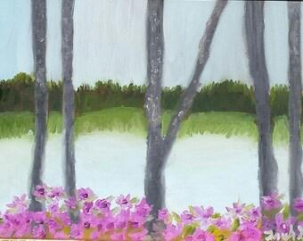 Lake Beyond the Blooms