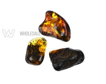 3 units Wholesale amber stones. Polished amber. Natural amber pieces. Amber stones. Baltic amber. AS105