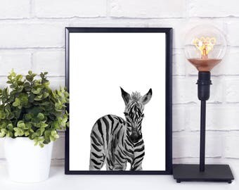 zebra nursery print, zebra nursery decor, zebra decor, zoo animal print nursery,  safari nursery decor, Nursery animal wall decal, nursery