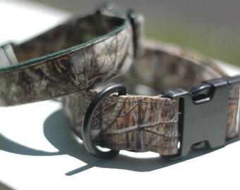 forest camo buckle dog collar