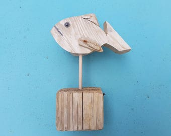 Small fish in Driftwood