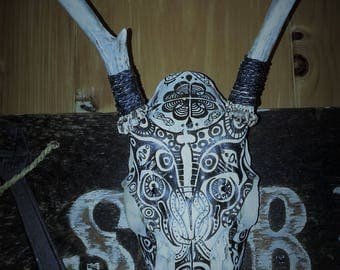 Handmade/Hand-painted animal skull-painted animal skull