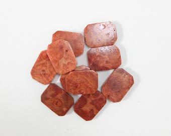 18mm x 13mm x 4mm Flat Sponge Coral Beads (10pcs.) S03
