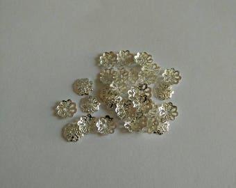 Silver colored metal caps