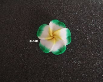 Exotic 30-35mm-drilled white, green and yellow flower.