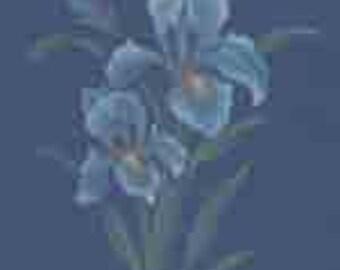 Original Iris Painting with Dark Background