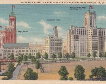 Chicago, Illinois Postcard - McKinlock Memorial, Campus Northwestern University