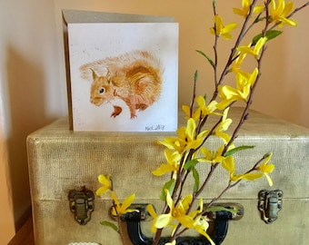 Red Squirrel Greetings Card, Christmas, Birthday, Thankyou, Blank, wildlife, Forest, woodland, nature lover, gifts for her, gifts for him